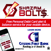 Shazam Bolts Website